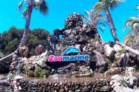 Due in uno: primo abbonamento congiunto per Zoomarine e MagicLand