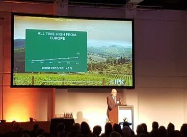 Airbnb non spaventa le adv: <br>le tendenze 2017 secondo Ipk