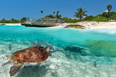 News dai Caraibi: dalla Giamaica record all'ExpHotel di Cancún