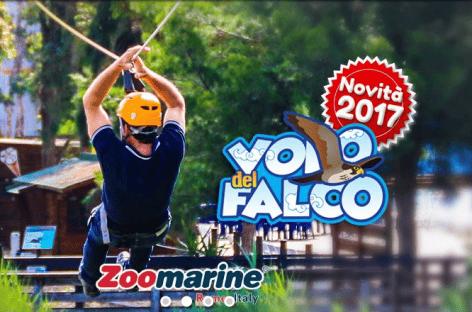 Zoomarine inaugura tre attrazioni per l'estate 2017