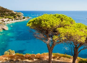 Isola d'Elba, Sharm e Londra: le mete top 2019 secondo TripAdvisor