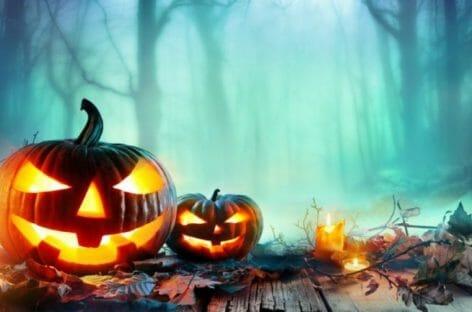 Zoomarine, un mese di eventi per festeggiare Halloween