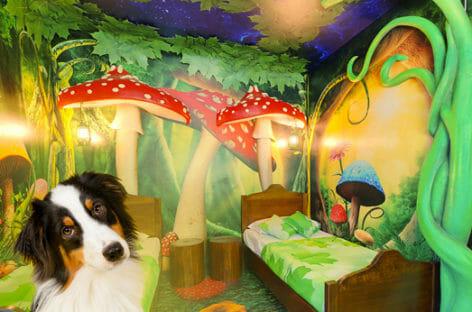 I Gardaland Resort diventano pet friendly per la stagione 2021